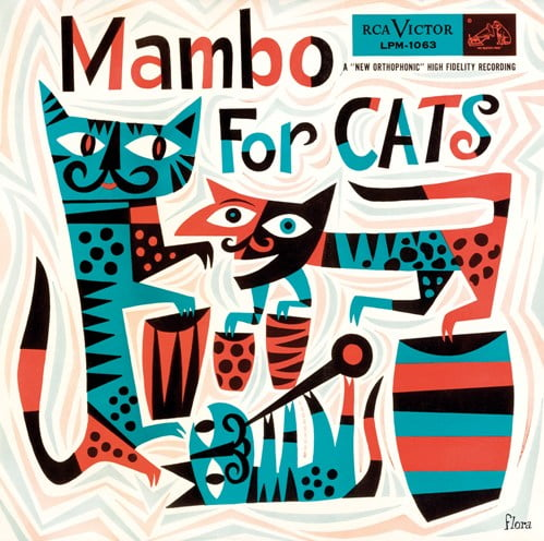 Fizzy Cat - Mambo for Cats